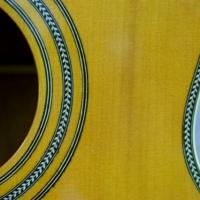 Hauver Guitar Holzapfel custom purfling pattern rosette