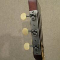 Hauver Guitar Blind Blake custom tuning pegs